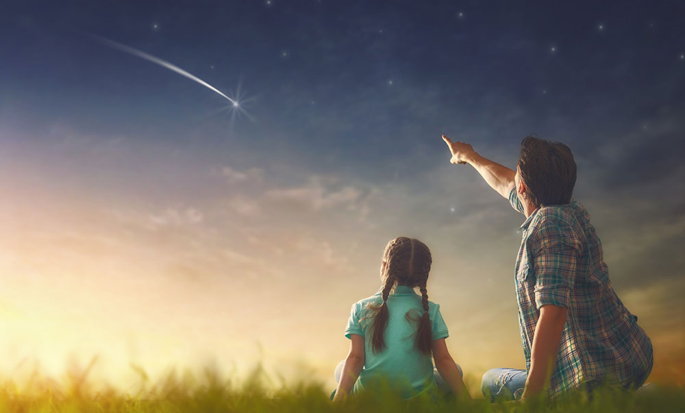 Adult pointing to shooting-star with child in field