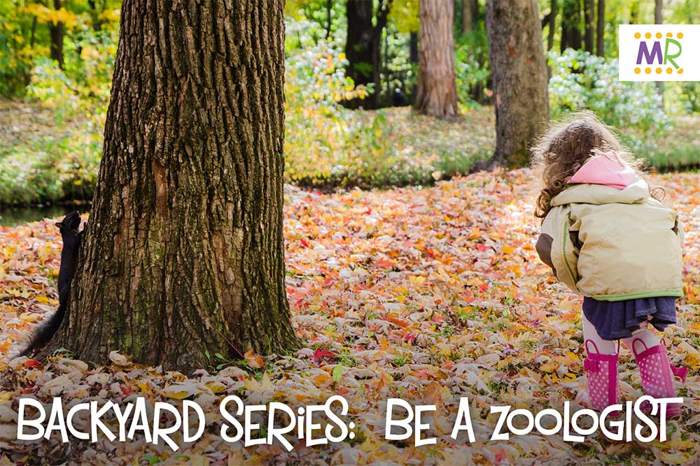 Backyard Series: Be a zoologist (Child in jacket playing in fall leaves)