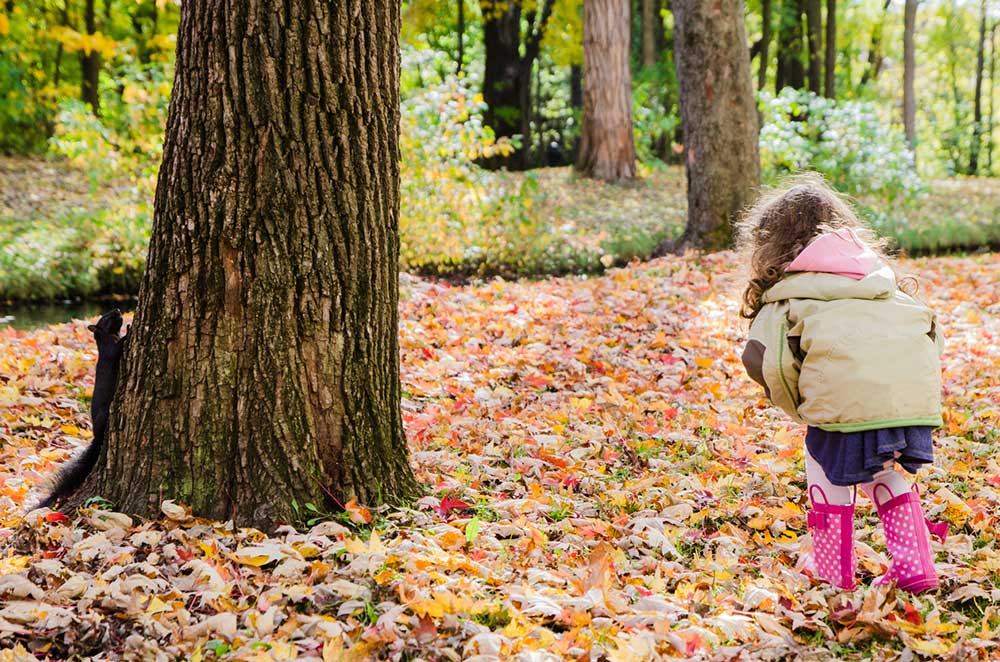 Child in jacket playing in fall leaves